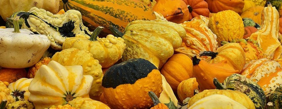 Menús de empresas para este mes de octubre